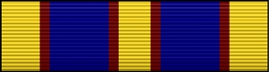 Coast Guard Auxiliary Distinguished Service Medal